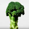 美人を眺める VS 野菜の動画を見る どちらがストレスが減るか実験した結果