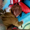 エーゲ海で漂流していた赤ん坊救出映像 ヤラセ臭いと話題に…ヨーロッパ、中東シリア難民(動画アリ)