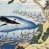 【海外の反応】日本政府が捕鯨問題で国際司法に一切応じない!宣言キタ―(゚∀゚)―!!