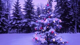 おまえらの好きなクリスマスソング挙げてけ ※音アリ※…みんなが好きなクリスマスソング・ランキングTOP20