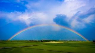 【画像】虹の根元を見たことあるかい?