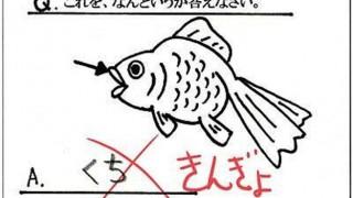 これイカンのか?なぜ不正解になったか分からない漢字テスト