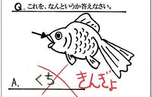 なぜ不正解になったか分からない漢字のテスト
