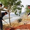 どうして中国の緑化に日本がお金出すの? 日本政府、中国の緑化に100億円拠出へ