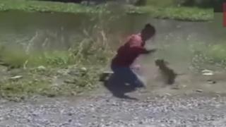 猿と取っ組み合いの喧嘩をするバイク乗りの動画 くっそワロタwwwwwww