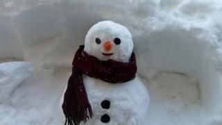 アメリカ人の雪だるまへのこだわりをご覧ください(画像)…雪だるま作りのコツ