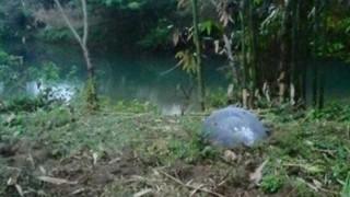 ベトナムに落ちた謎の球体 これなんなん・・・(画像)