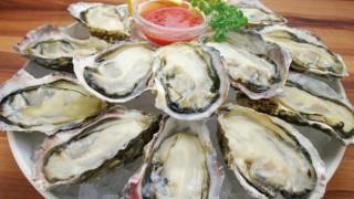 ノロウイルス感染したくて加熱用牡蠣をそのまま食べてみた結果