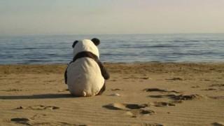 日常生活で感じる孤独 一番さびしさ感じる画像あげてけ …中国ネットで話題に「#いちばんさびしい写真は」