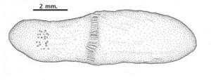 b159e367