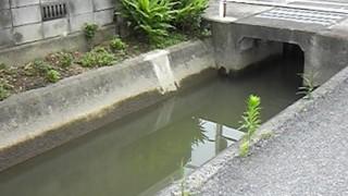 【悲報】岡山県、3年間に31人が用水路に落ちて死亡<画像>転落事故多発の怖すぎる用水路