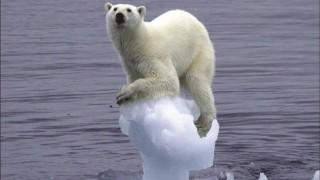 地球温暖化問題<2ch反応>世界の年平均気温は観測史上最高を記録 北極の氷、面積最小に