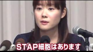 STAP細胞はありますん!? STAP現象が確認 小保方晴子氏を信じる2ch住人の手首はもうボロボロよ!