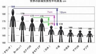 ワイ平均身長世界一のオランダ人とのハーフに生まれた結果