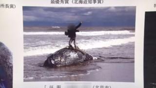 クジラ死骸ガッツポーズ写真 写真家たちの評価…北海道立オホーツク流氷科学センター写真コンテスト最優秀作品にネット炎上