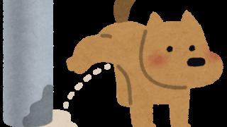 犬の小便で照明柱が腐って倒れ女児が挟まれ重傷 悪いのは飼い主か大阪市か 2ch議論