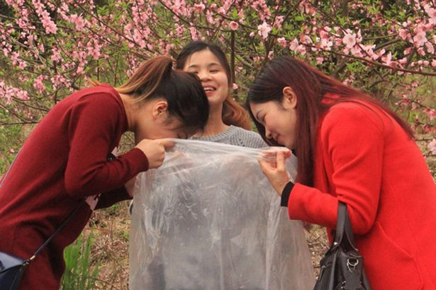 wpid-Visitors-collect-clean-air-in-north-area-of-Guangdong-ProvinceSOCIAL-IMAGE.jpg