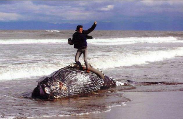 wpid-whalecontest1.jpg
