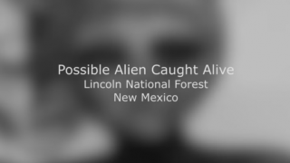 生け捕りにされたエイリアンが凄く可哀相な件<動画像>UFO墜落 米ニューメキシコに