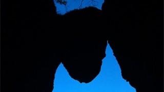 「落ちそうで落ちない巨石」が落ちる<熊本地震>南阿蘇村「免の石」割れ目から落下 受験生合格祈願に人気のスポット