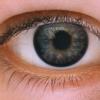 眼科で眼球の裏側を掃除してもらった結果