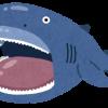 水揚げされた幻のサメ メガマウスが完全にオッサン ※画像※