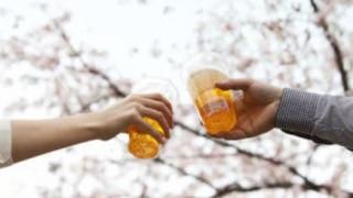 【悲報】一部東京人の花見マナーが酷すぎる<画像>代々木公園のゴミ放置の惨状
