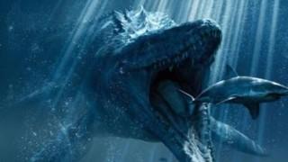 海で謎の巨大生物みつかる<画像>南ウェールズ