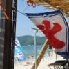 こんな過激なビキニが今年の日本の夏に流行るらしい<画像>海いかなきゃ(使命感