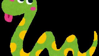 【化石】約6000万年前の古代の蛇デカすぎwwwwwwwwww