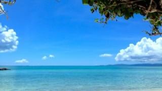 無人島の砂浜にSOS<画像>漂着し助けを求める2人