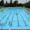 【朗報】市民プールにとんでもない乳したJCが現れる【画像】