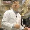 【超朗報】治療開始から1日で体内4カ所のガン細胞が消滅…日本人が新しいガン治療法の開発に成功