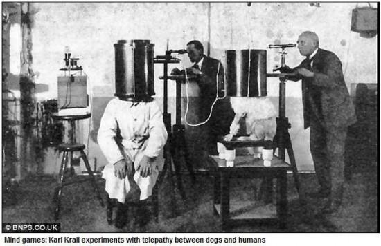 ナチスが行った非常識な犬の実験 (2)