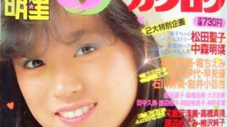 【画像】昭和アイドルのヘアカタログ見てるの楽しいwwwww