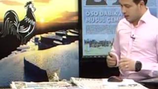 【乱入】ニュース生放送中に子猫が机の上でくつろぎだす可愛すぎる放送事故 →ネコ乱入ハプニング動画