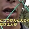 沖縄デモ偏った報道と不都合な真実「土人」どころか凶暴なチンパンジー反対派の過激活動の数々