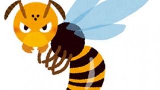 【画像】スズメバチに刺された可哀想なイッヌ