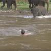溺れる飼育員さんのピンチに駆けつける象さん →動画