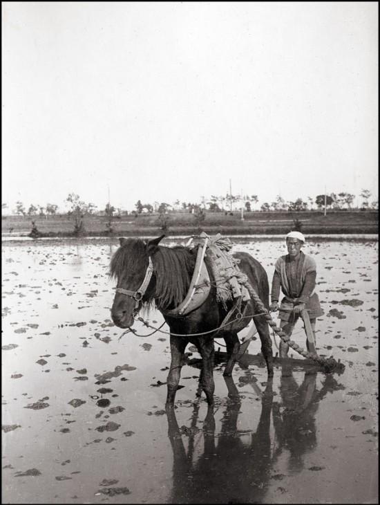 yokohama-in-the-late-1900s-36