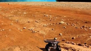 NASA撮影 火星でゴキブリのようにうごめく生物を発見 →動画とGIF