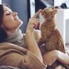 「貧乏人はペットを飼うな」獣医師のツイートに賛否