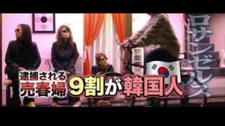 アメリカで逮捕されたレジェンド韓国人売淫婦のお姿をご覧ください →画像