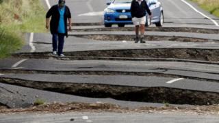 ニュージーランド地震で陸の孤島に取り残された悲しい動画像