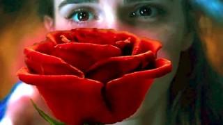 初日1200万回再生 エマワトソン主演「美女と野獣」の予告編が美しい・・・