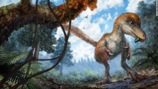 dinosaur-amber-coelurosaur