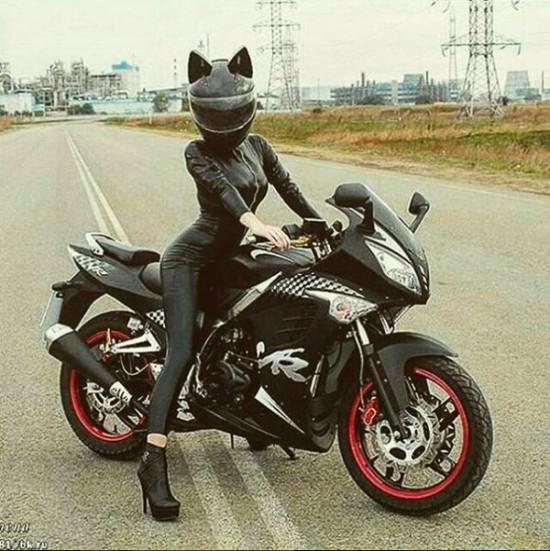wpid-neko_helmet_20161206_005-thumb-600x601-626843.jpg