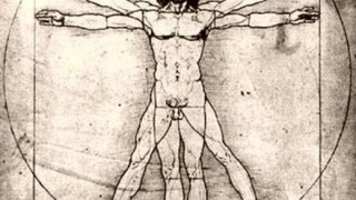【衝撃】人体に『新たな臓器』が見つかる