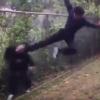 これがイジメじゃないって言う奴<動画>無抵抗の中学生を同級生が殴る蹴る 沖縄 美里中学校暴行現場