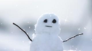 ネコさん「なんやめっちゃ雪積もっとんなぁ~」